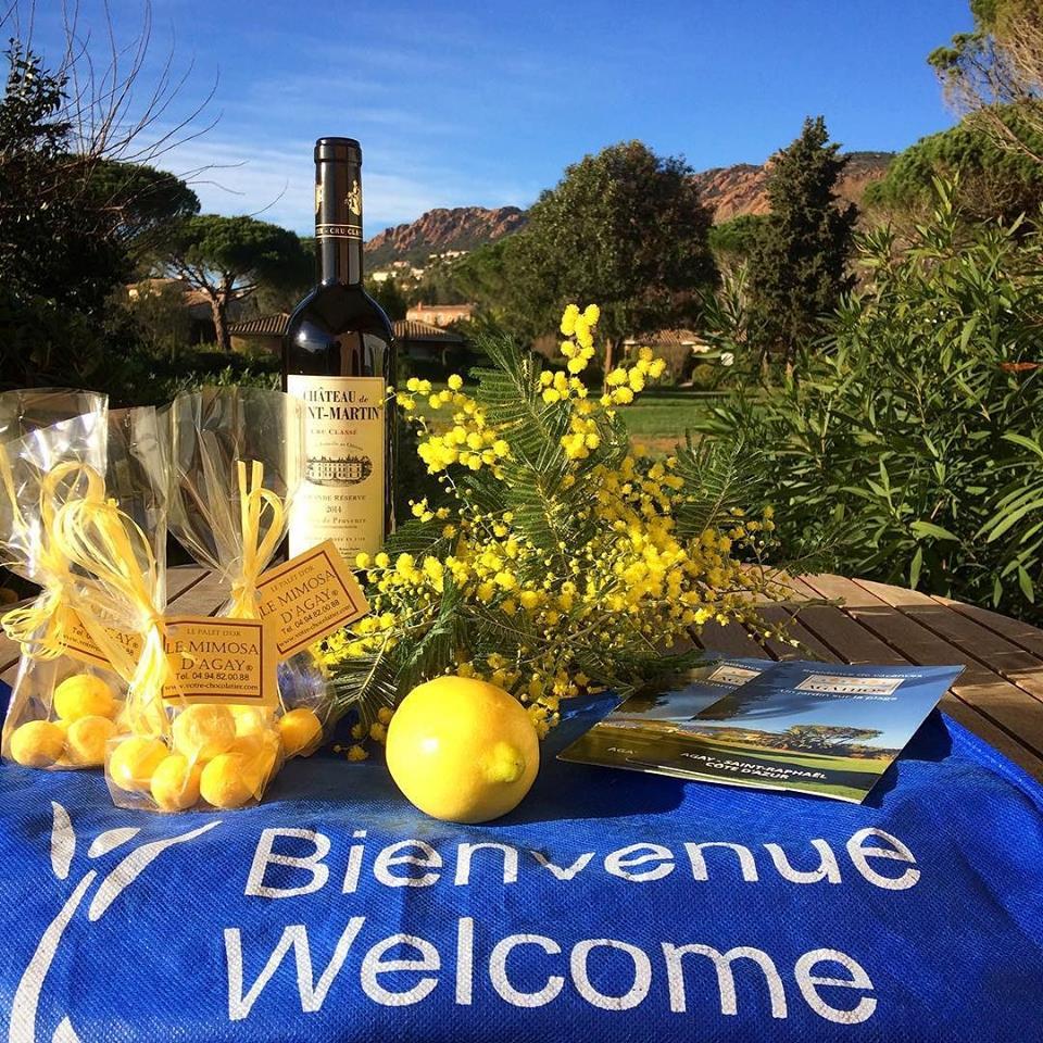 Vin-chocolat-mimosa-jardin-fleur-promotion-fevrier-sejour