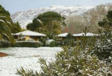 Le-jardin-en-hiver